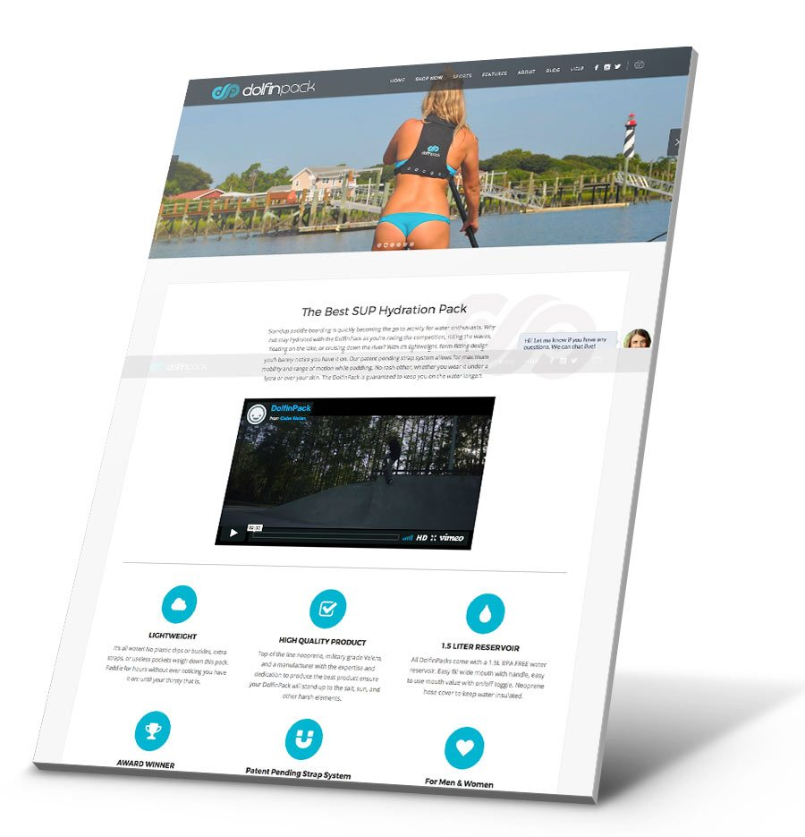 DolfinPack WordPress Website Design