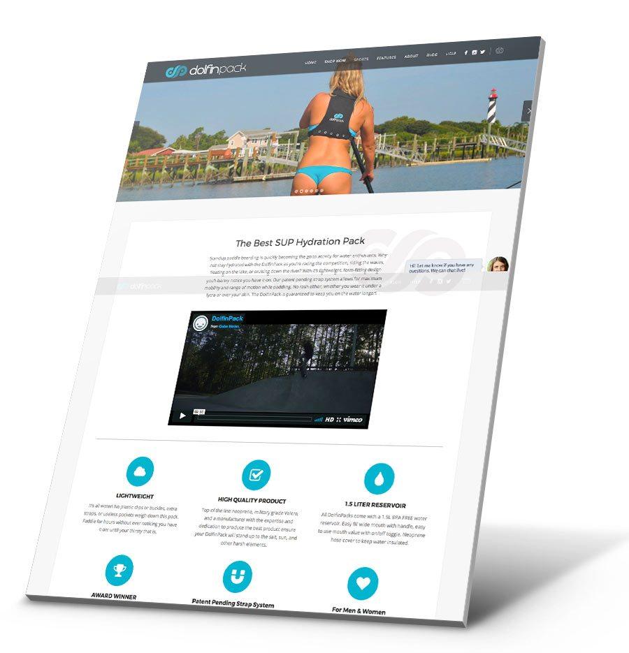 DolfinPack WordPress Website Design